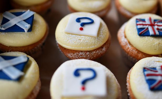 réferendum / cupcakes /drapeaux-Écosseà et Royaume-uni